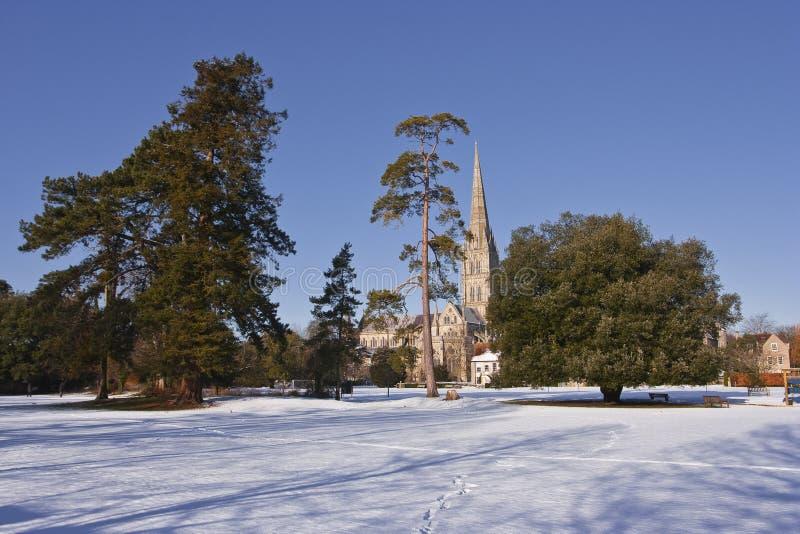 Снег собора Солсбери стоковые фотографии rf
