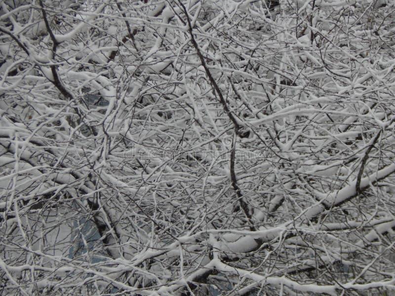 Снег текстуры упал на улицу белую стоковое изображение