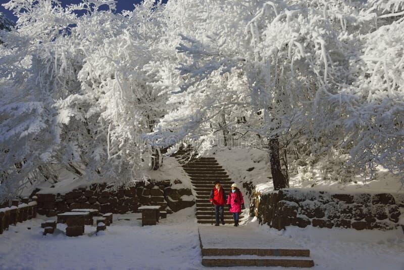 Снег Huangshan держателя стоковая фотография rf