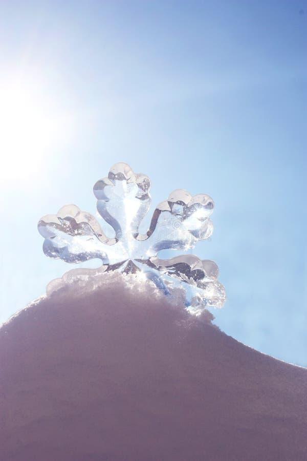 Снежинка в снежке стоковое изображение rf