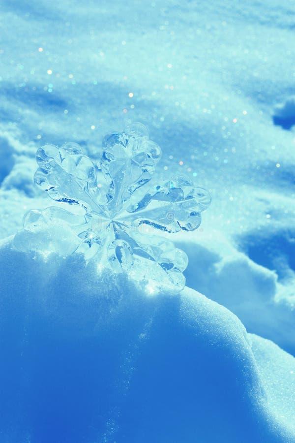 Снежинка в снежке стоковая фотография
