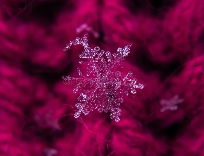 Снежинка красива на красном зимнем фоне стоковое изображение rf