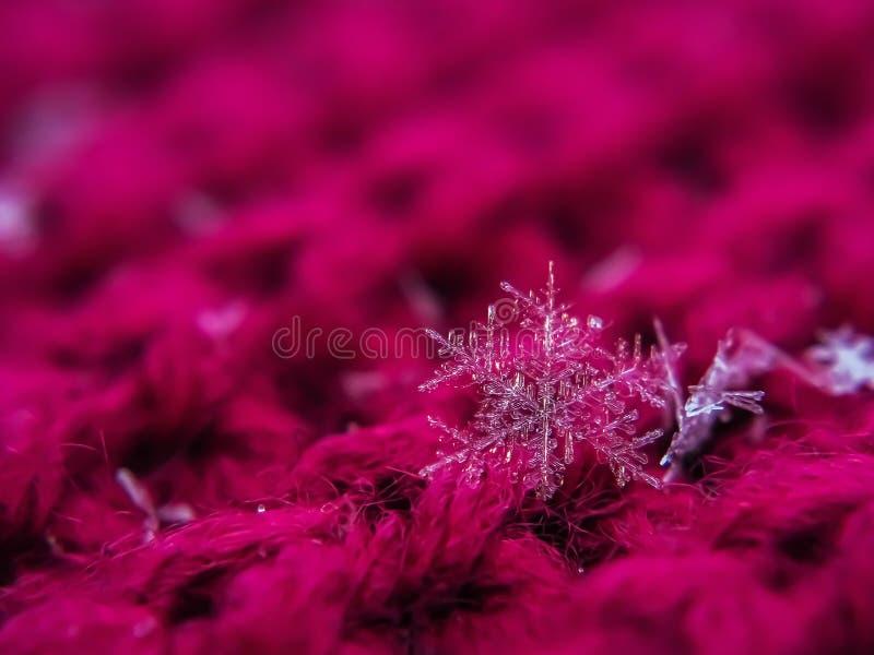 Снежинка красива на красном зимнем фоне стоковое фото