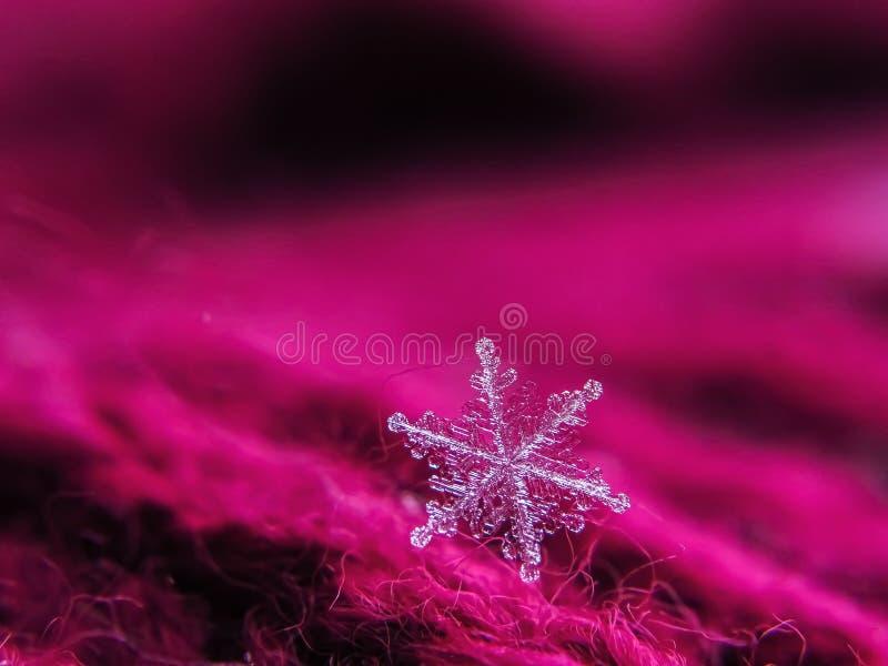 Снежинка красива на красном зимнем фоне стоковые изображения