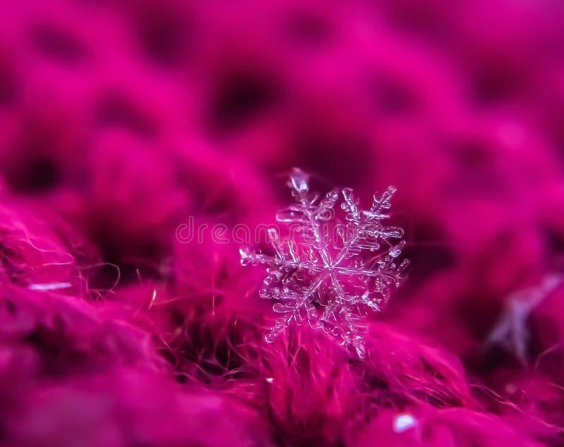Снежинка красива на красном зимнем фоне стоковая фотография rf