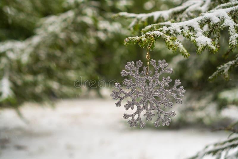 Снежинка украшения рождества на ветви ели стоковое фото