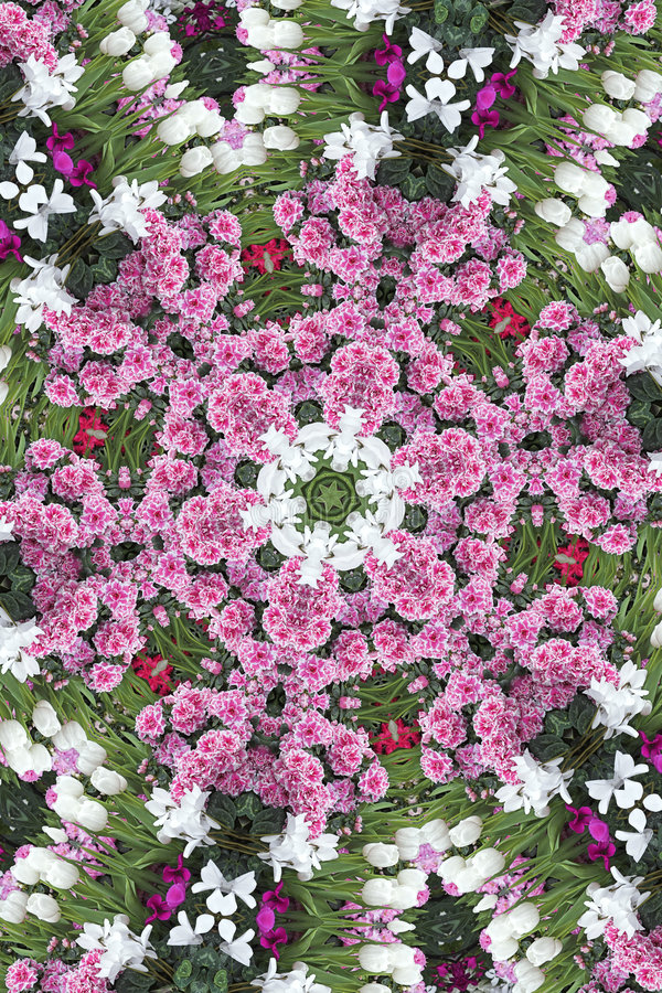 снежинка цветка бесплатная иллюстрация