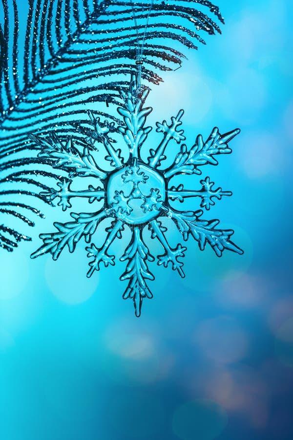 Снежинка Chrystal прозрачная на серебряной ветви стоковое изображение rf
