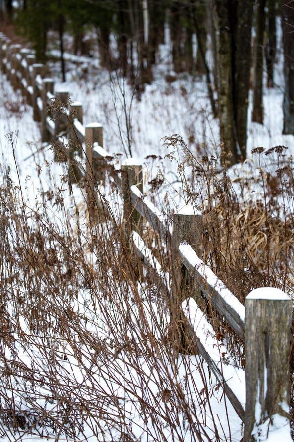Снежно-покрытая деревянная стена рядом с лесом стоковые изображения