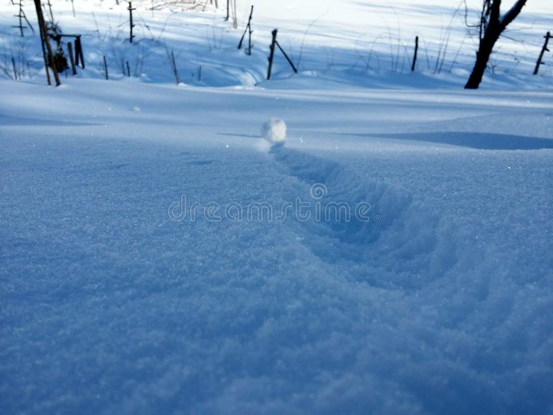 Снежный ком и снежинки стоковое фото rf