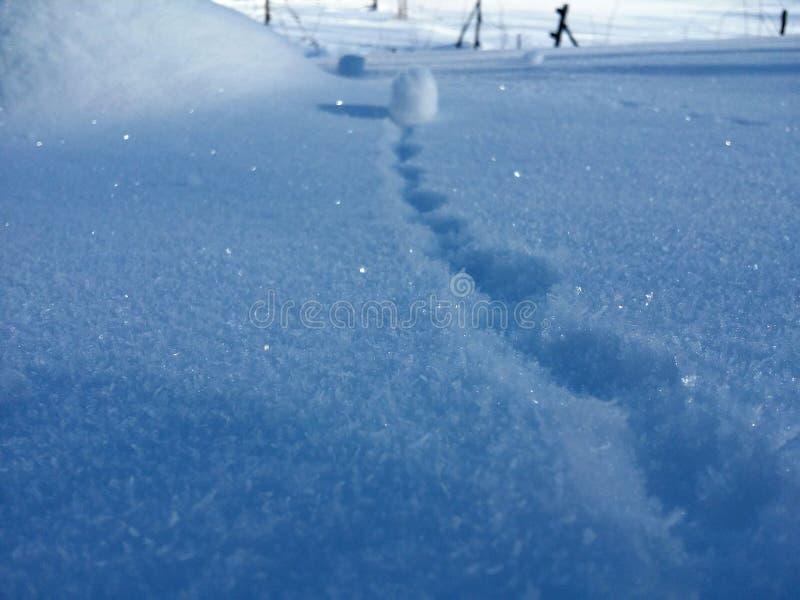 Снежный ком, сияющие снежинки и зима стоковые изображения rf