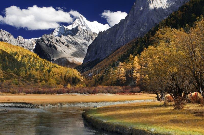 снежок горы стоковые изображения