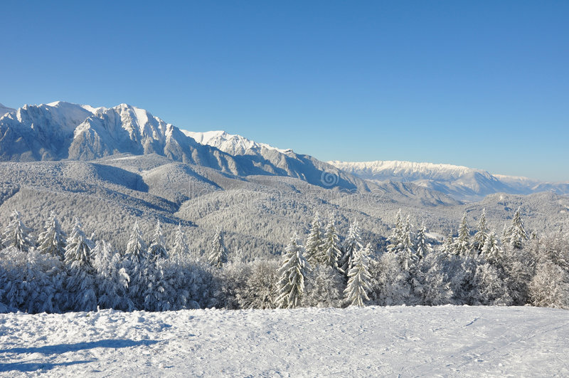 снежок горы стоковая фотография