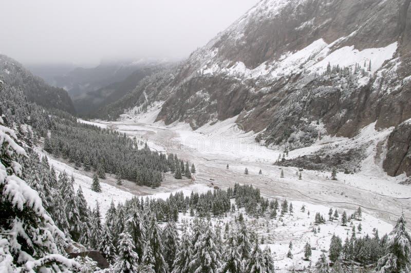 снежок гор доломита осени предыдущий стоковая фотография