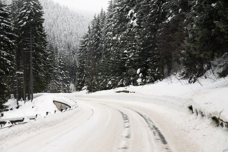 снежок дороги кривого стоковые фото
