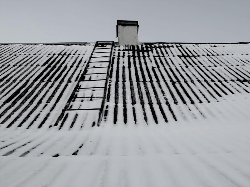 снежок крыши стоковые изображения