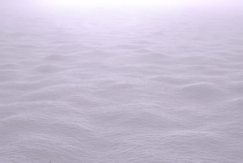 снежок мягкий стоковые фото