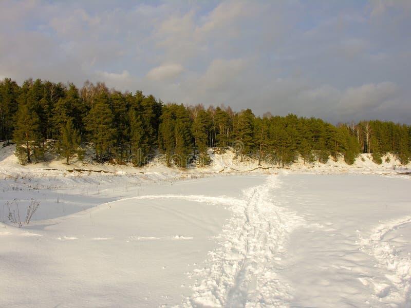 снежок неба дороги сосенок стоковые изображения rf