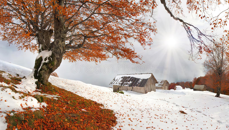 снежок осени первый неожиданный стоковое изображение