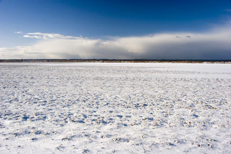 снежок поля стоковое фото rf