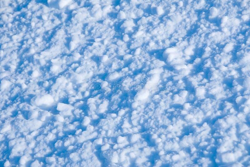 снежок стоковое фото