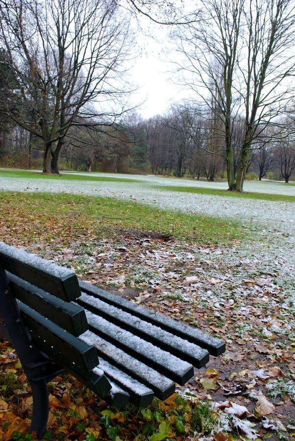 снежок berlin tiergarten стоковые изображения