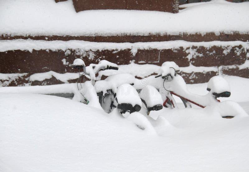 снежок bikes стоковые фотографии rf
