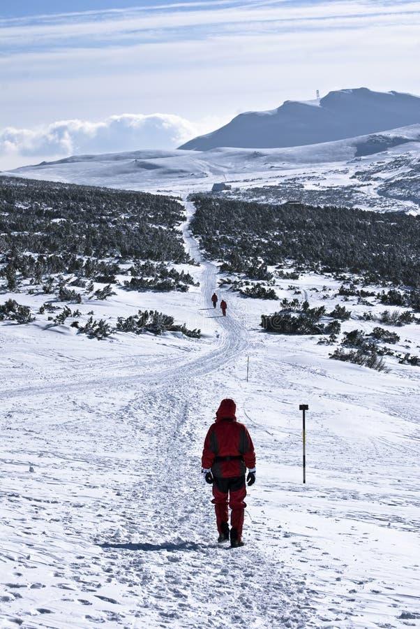 снежок trekking стоковая фотография rf