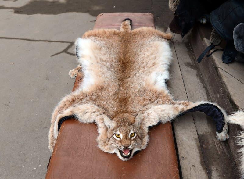 Снимите кожу с рыся на рынке Vernisazh в Izmailovo стоковая фотография rf
