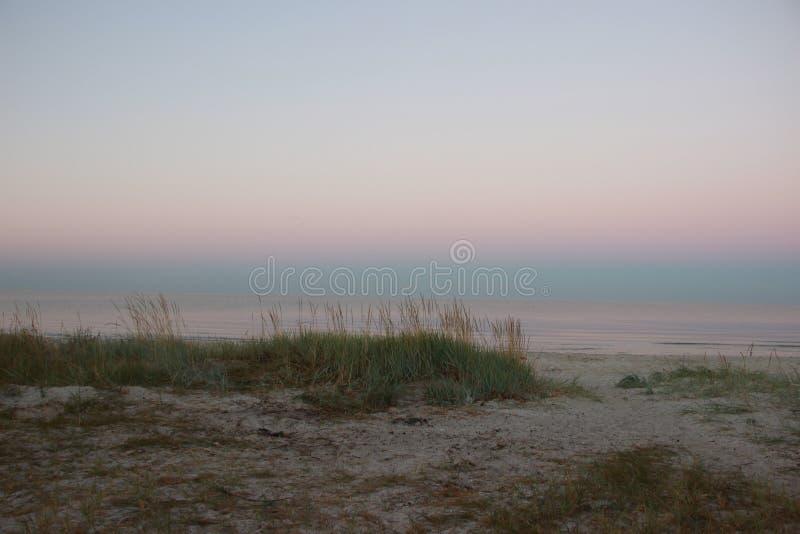 Сногсшибательный рассвет на береге Чёрного моря Одичалая Украина стоковая фотография rf