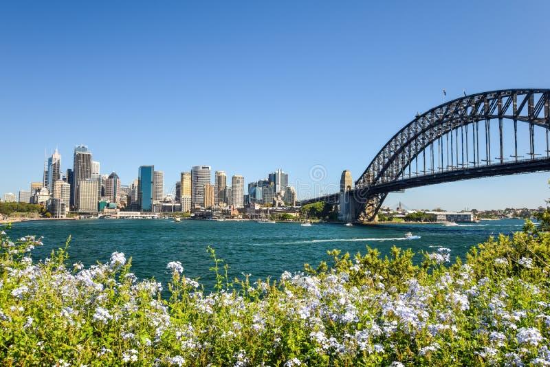 Сногсшибательный широкоформатный взгляд горизонта города района гавани Сиднея CBD на круговой набережной с мостом гавани Увиденны стоковое изображение