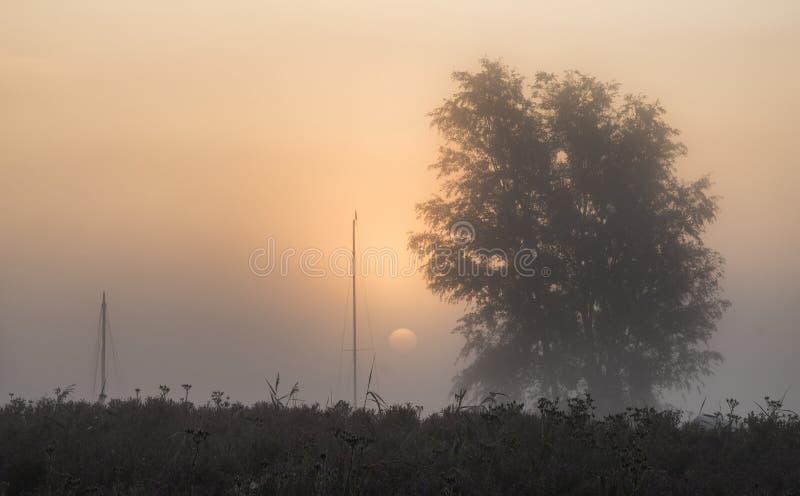 Сногсшибательное зарево восхода солнца над туманным рекой в ландшафте сельской местности стоковое фото