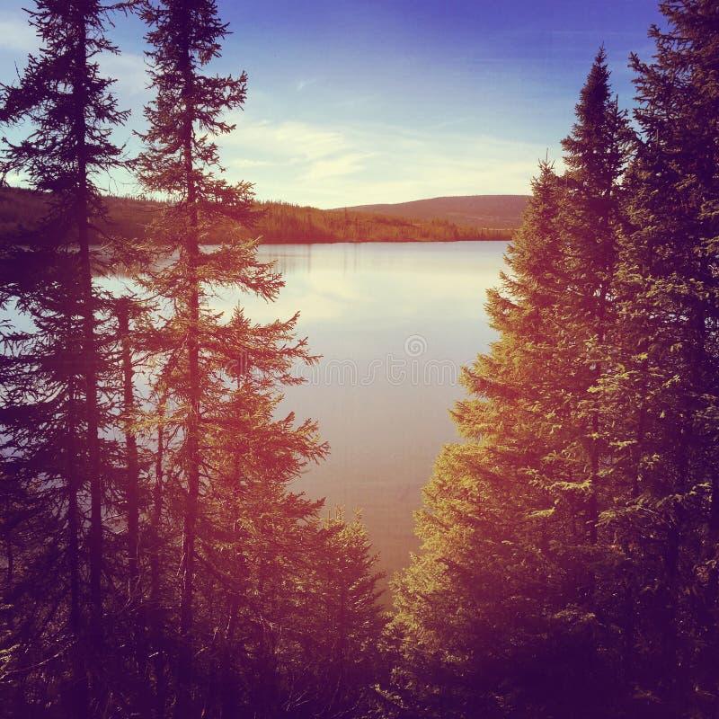 Сногсшибательное instagram мирного озера в вечере стоковое фото rf