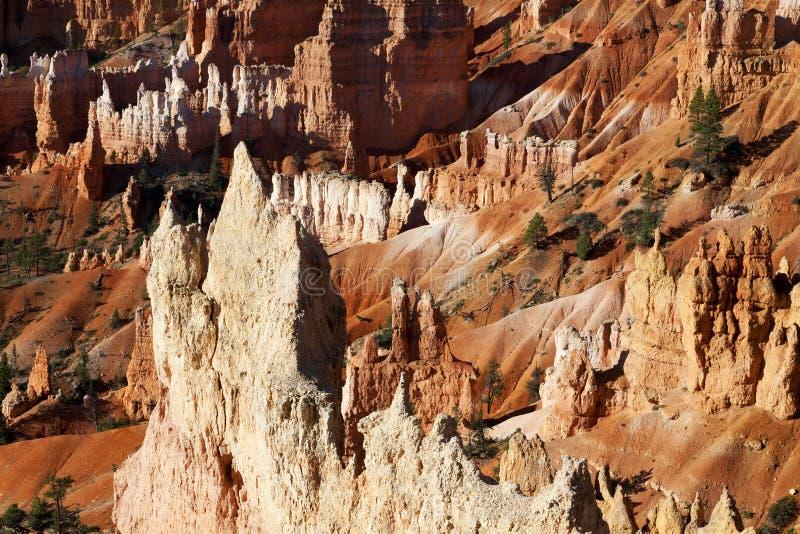 Сногсшибательный ландшафт каньона Bryce стоковое фото rf