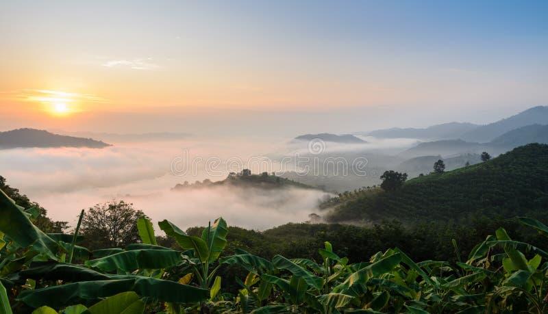 Сногсшибательный взгляд восхода солнца горы с морем тумана стоковые фотографии rf