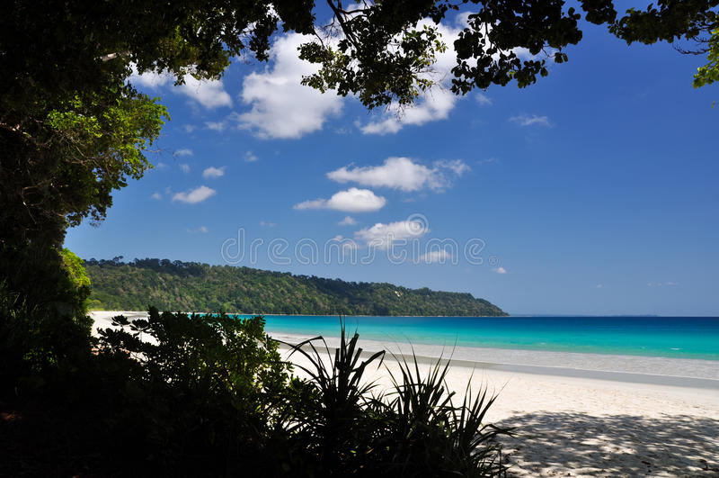 Сногсшибательный взгляд пляжа Radhanagar на острове Havelock - Андаманских островах, Индии стоковое изображение
