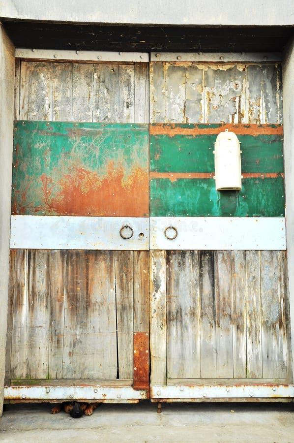 Собака & дверь стоковые фото
