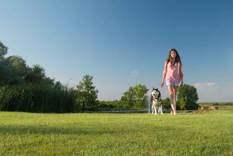 Собака девушки идя стоковое изображение