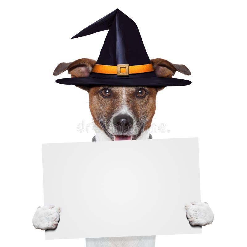 Собака знамени placeholder Halloween стоковое изображение rf