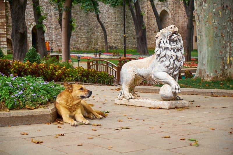 Собака имбиря отдыхает около статуи льва в парке Gulhane Стамбул стоковое изображение