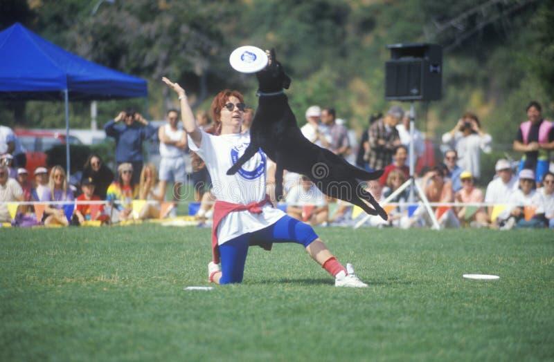 Собака и женщина участвуя в Полу-выпускных экзаменах чемпионата мира собачьего состязания Frisbee, Rose Bowl, Пасадина, CA стоковые изображения rf