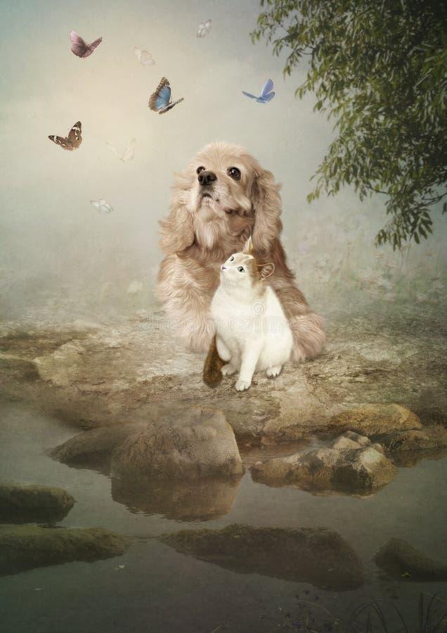 Собака и кот стоковое изображение rf
