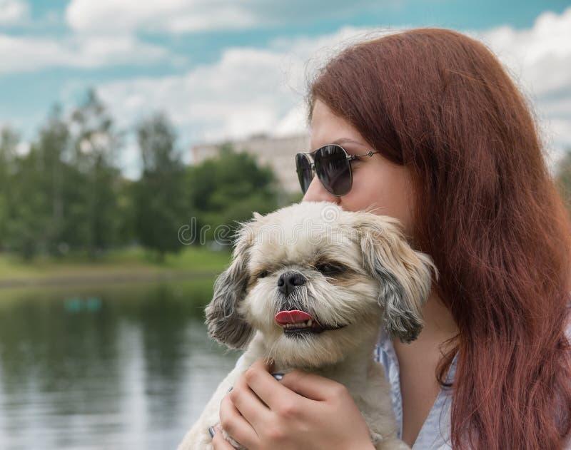 Собака и своя молодая женщина предпринимателя лучшие други стоковая фотография