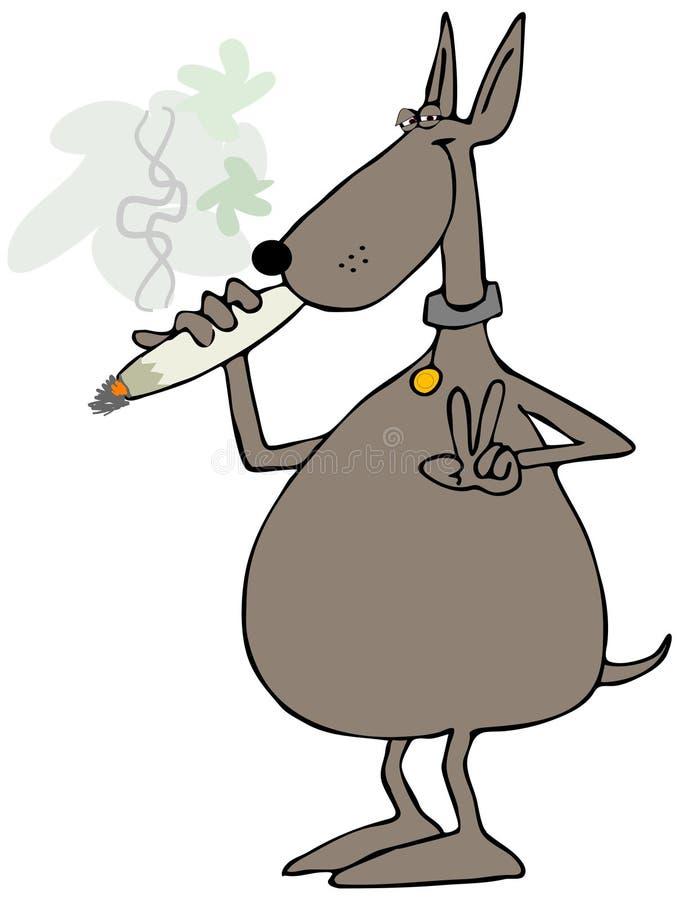 Собака куря соединение иллюстрация штока