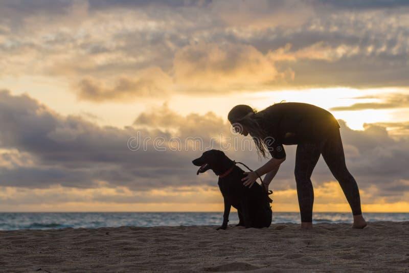 Собака молодой женщины petting на заходе солнца стоковое фото rf
