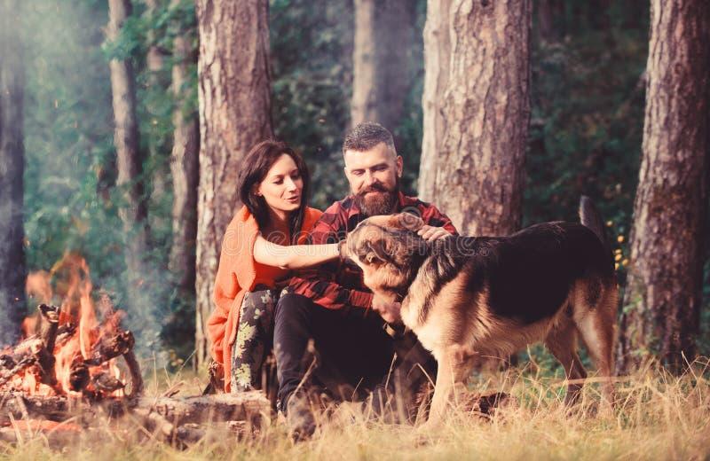 Собака немецкой овчарки Пэт пар около костра, предпосылки природы стоковое фото