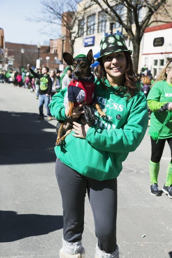 Собака дня St Patty, парад дня St. Patrick, 2014, южный Бостон, Массачусетс, США стоковое фото rf
