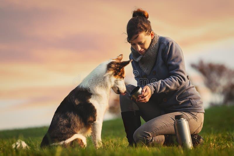 Собака питьевая вода от чашки, охлаждая перерыв от прогулки в природе стоковое фото