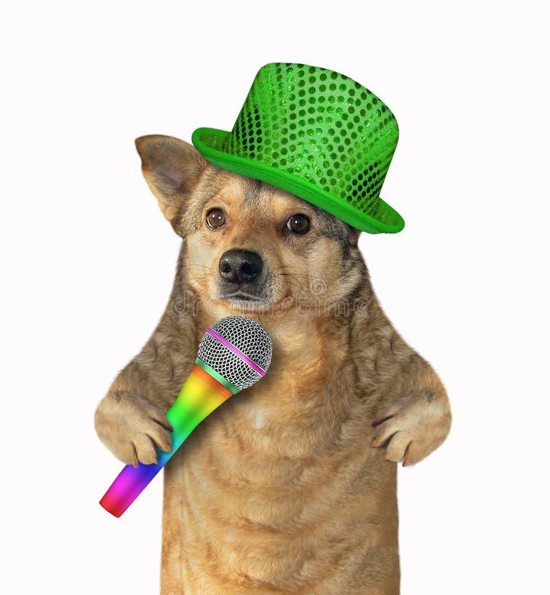 Собака поет песню стоковые изображения