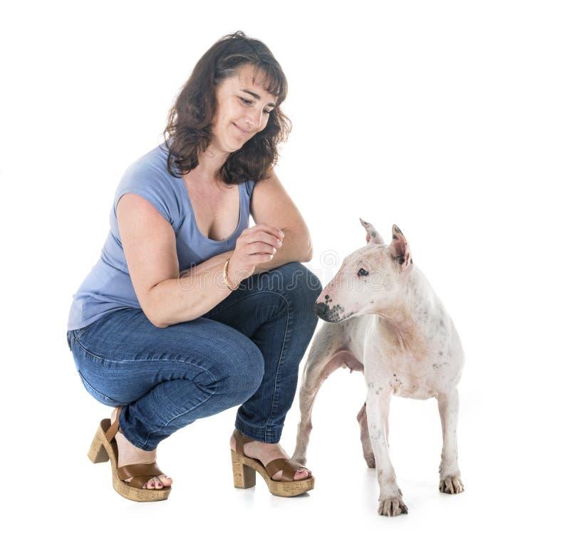 Собака, предприниматель и повиновение стоковая фотография rf